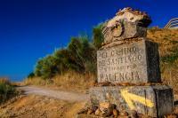 camino-de-santiago.png