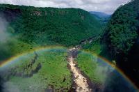 kaieteur-falls-rainforest-guyana-c-staffan-widstrand-wwf.jpg