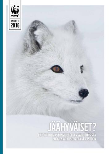 jaahyvaiset-raportti.pdf