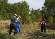WWF:n vilkas talkookesä alkaa luonnonkauniista Helsingin Vallisaaresta – luvassa arvokkaiden perinneympäristöjen kunnostusta ja muoviroskan siivoamista