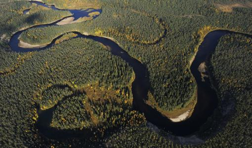 Raportti: Suurin osa Euroopan vesistöistä voi huonosti – Suomessa tilanne on pahin rannikkoalueilla