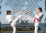 Taekwondofestivaali Maarianhaminassa 11.-13.8.2017!