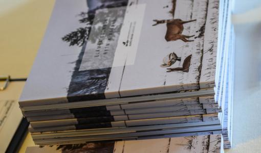 Kuopion alueelle eurooppalaisen gastronomisen alueen tunnustus