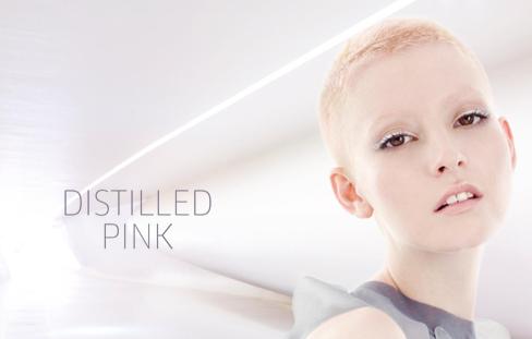 distilled-pink.png