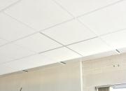 Mattavalkoisella listalla valkoinen katto