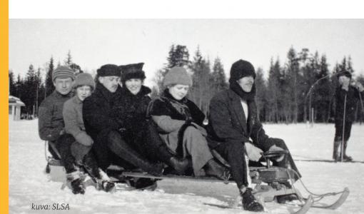 Suomen kielet 1917–2017: Itsenäistymisestä 500 kielen kirjoon