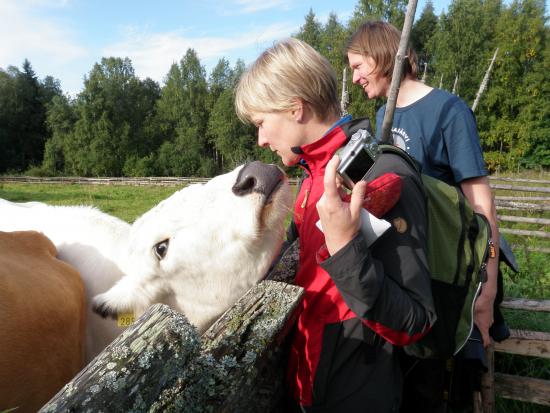 luonnonhoitajat-kohtaavat_kolilla_metsahallitus_kaisa_raatikainen_2013.jpg