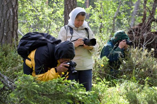 luontokuvaajat-oulangan-kp_kuvaaja_pirkko_siikamaki.jpg