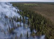 Uraauurtava kokeilu helpotti suojelualueen ennallistamista Pudasjärvellä