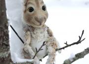 Talvilomalla tekemistä Haltiassa ja maksuton bussikuljetus Helsingistä Nuuksioon