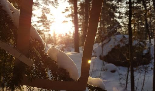 Talvilomalla tapahtuu Nuuksiossa - Tutustu Haltian, Swinghillin ja Solvallan ohjelmaan