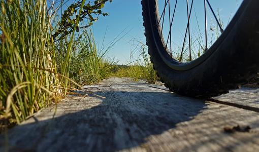 Maastopyöräily nosteessa Urho Kekkosen kansallispuistossa