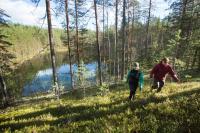 kuva_tea_karvinen_rokuankansallispuisto.jpg