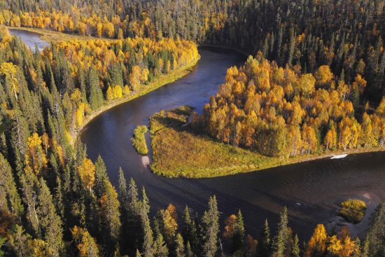 oulanka_river-kitkajoki_ismopekkarinen.jpg