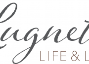KUTSU MEDIALLE 3.3. - Lugnet Life & Living saa uuden omistajan ja ilmeen