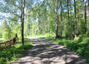 Mäntyharjun kunta avaa uuden Tervaniemen asuntoalueen varattavaksi