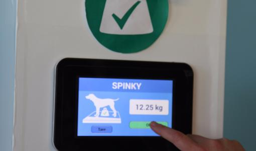 Internet of Things arrives to animal health care