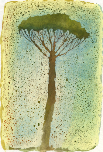 virpi-talvitie-voimapuu.jpg