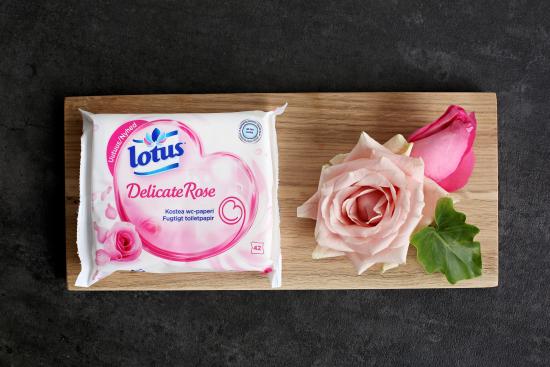 lotus-delicate-rose-fiiliskuva.jpg