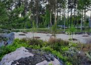 Teemu Pukin puisto vihitään Pyhtäällä – Norwich City FC ja Kotkamills istuttavat 26 puuta Maailman ympäristöpäivän (5.6.) ja Pukin maalien kunniaksi