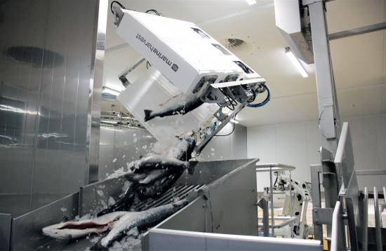 kalaneuvos-robotti-laatikoiden-purku-2021.jpg