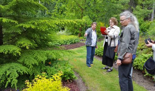 Avoimet puutarhat houkuttelivat runsaasti vierailijoita