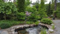 vesiaiheet-inspiroivat-puutarhaharrastajia.jpg