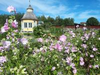 moni-historiallinen-puutarha-on-avoinna-tapahtuman-aikana.-kuva-pietarsaaren-aspegrenin-puutarhasta.jpg