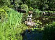 Rekordmånga trädgårdar öppnar sina portar