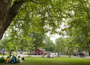100 puistoa -kampanja etsii Suomen parhaita puistoja
