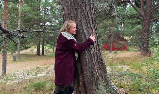 Nyt vietetään valtakunnallista puunhalausviikkoa!