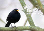 Talviseuranta kutsuu luonnossa liikkujat havainnoimaan muuttuvaa talvea