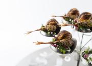 Euroopan Bocuse d'Or -karsinnat - Suomi maistuu savulta, syksyiseltä metsältä ja rapujuhlilta