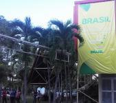 brasilian-halli.jpg