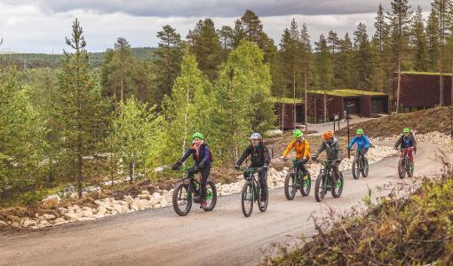 Huoli ympäristöstä käynnisti yrittäjien yhteiset roskatalkoot Rovaniemellä