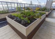 Rakentamisen Ruusu -palkinto innovatiiviselle Vihreistä vihrein -kerrostalokorttelille