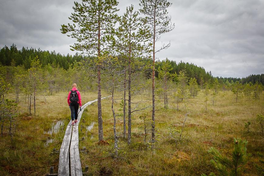 lappeenrannan kaupunki avoimet työpaikat Kuusamo