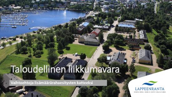 taloudellinen-liikkumavara.pdf