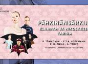 Yleisölle avoin Lappeenrannan kaupunginteatterin infotilaisuus keskiviikkona 1.11.2017 klo 14, aiheena Pähkinänsärkijä – Klaaran ja Nikolaksen tarina
