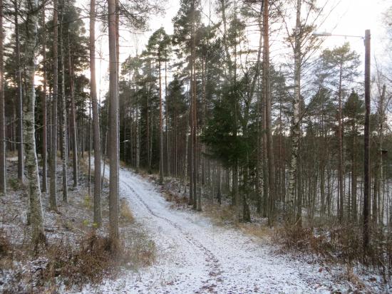 nakyma2-ahvenlammen-alueelta-marraskuussa-2017-_-kuva-risto-laukas.jpg
