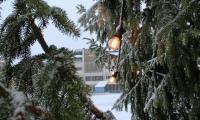 kaupungintalon-edustatori_sami-soljansaari-lappeenrannan-kaupunki-.jpg