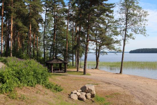 rauha-tiurun-luontoa-kuvaaja-suvi-niemi-lappeenrannan-kaupunki.jpg