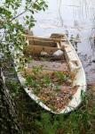 hylatty-romuvene-voisalmen-rannalla-kuva-pia-haakana.jpg