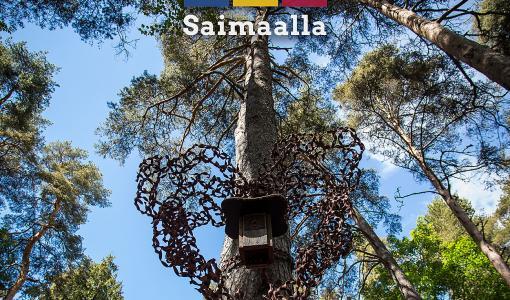 ITE Saimaalla -kirja esittelee eteläsavolaisia ITE-taiteilijoita