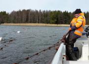 Vajaasti hyödynnetyt kotimaiset kalalajit voivat auttaa Itämerta toipumaan ja tarjota uuden kestävän proteiinin lähteen