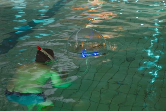 life-aquatic_2016_rauma_kuva-jani-sorjonen.jpg