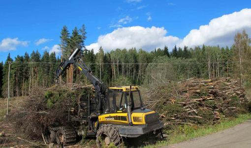 Metsähakkeen tuki Euroopan kustannustehokkaimpia